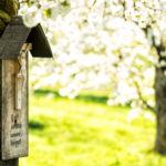Der Kampf um das Kreuz: Autoritäres Symbol oder Zeichen geschenkter Freiheit?